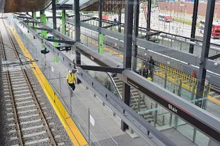 Clear Glass in Ottawa's LRT Stations Would Definitely Lead to More Bird Deaths